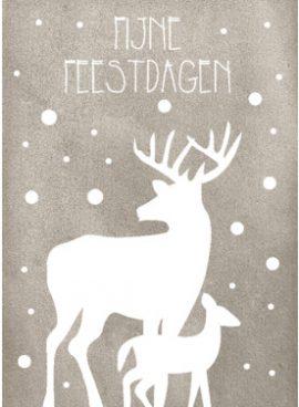 Fijne kerst teksten